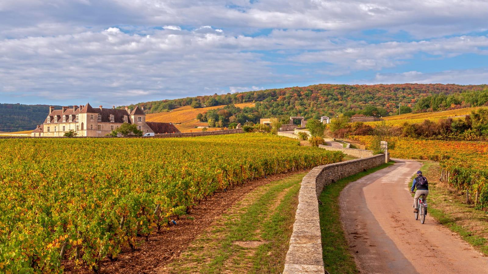 Vélo vers le Château du Clos de Vougeot