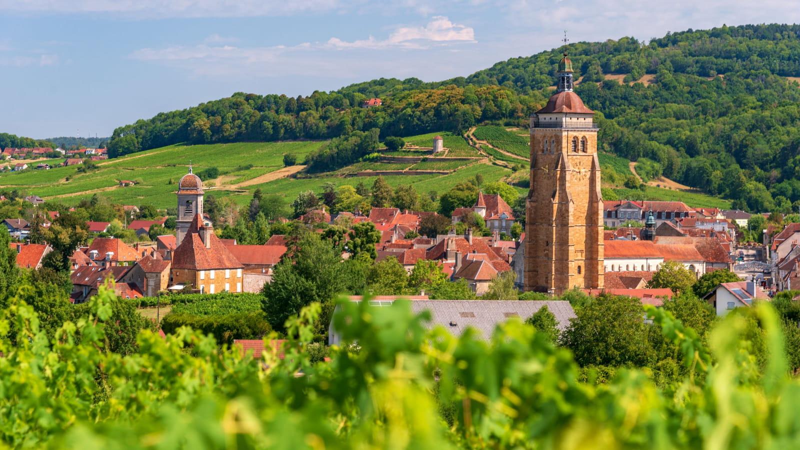Vignoble et village Arbois