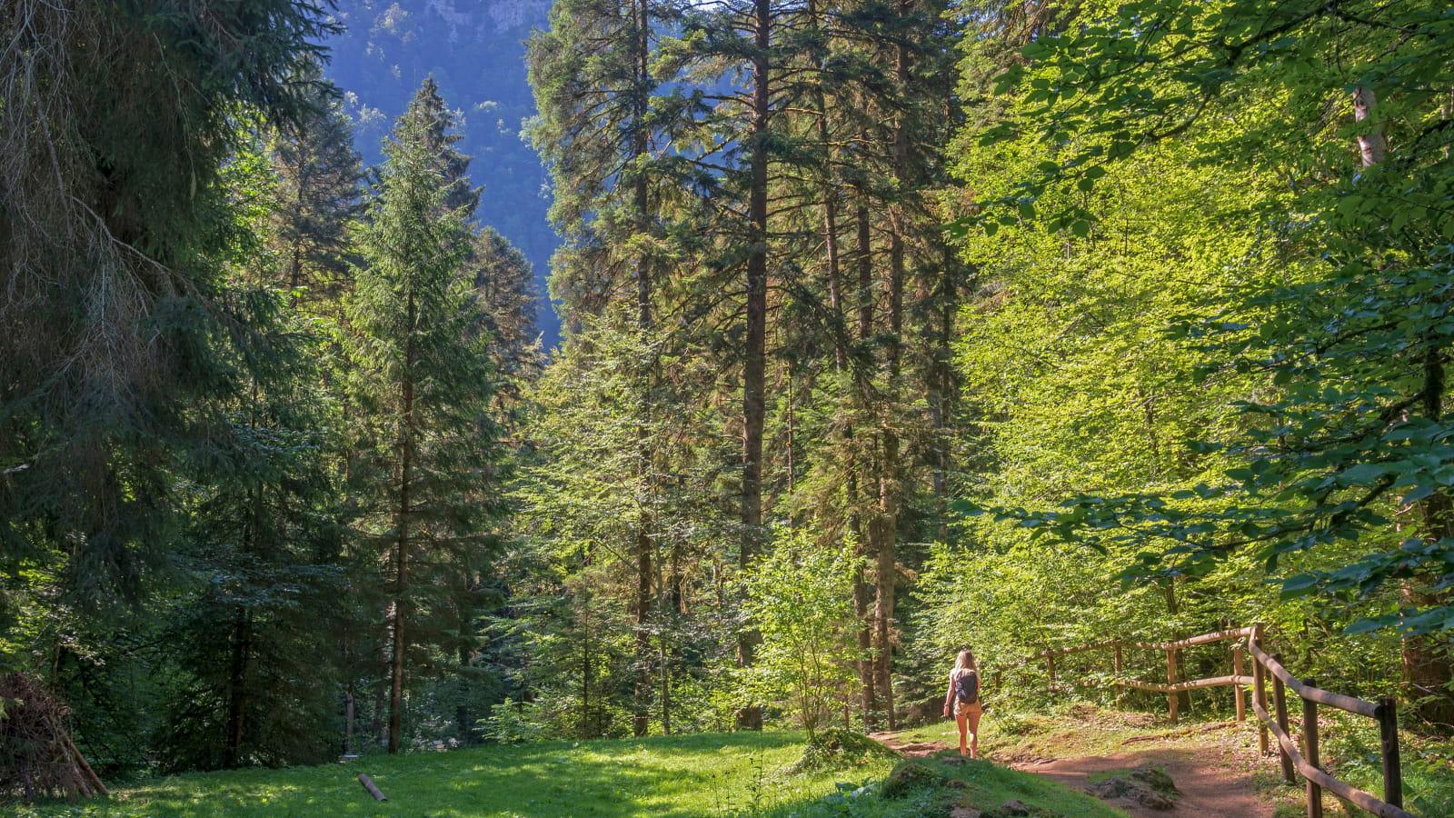 Balade dans le Cirque de Consolation dans les Montagnes du Jura
