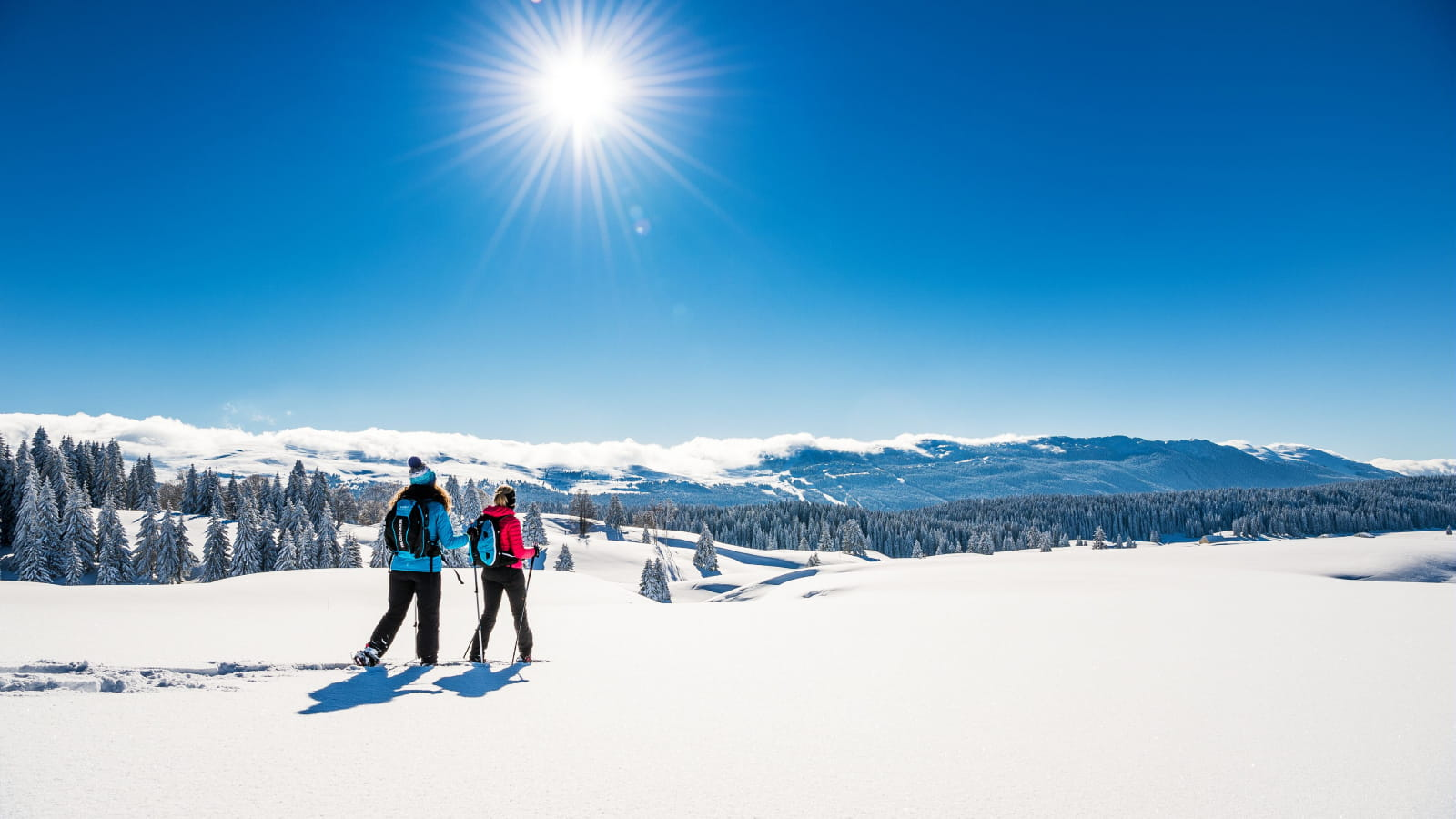 Randonnée raquettes dans les Montagnes du Jura