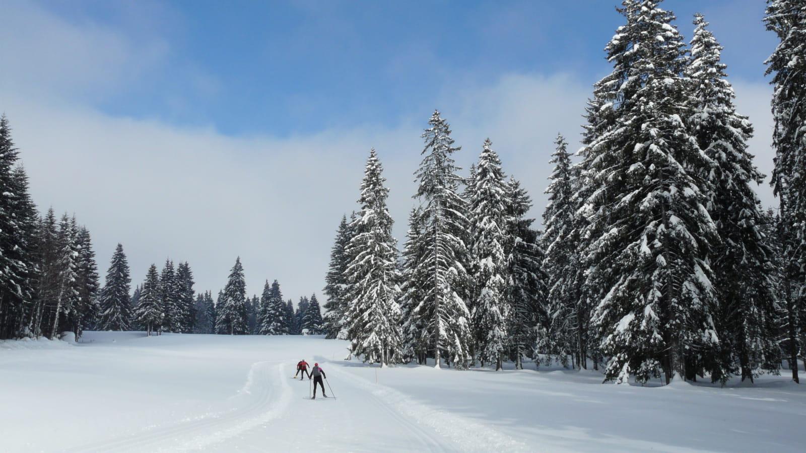 Ski nordique dans le Haut-Doubs